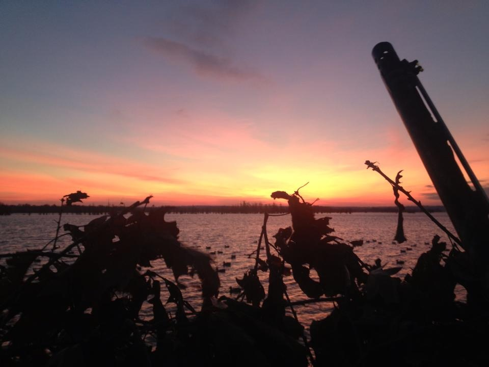 Tennessee hunting season 2017 2018 download pdf for Tn fishing regulations 2017